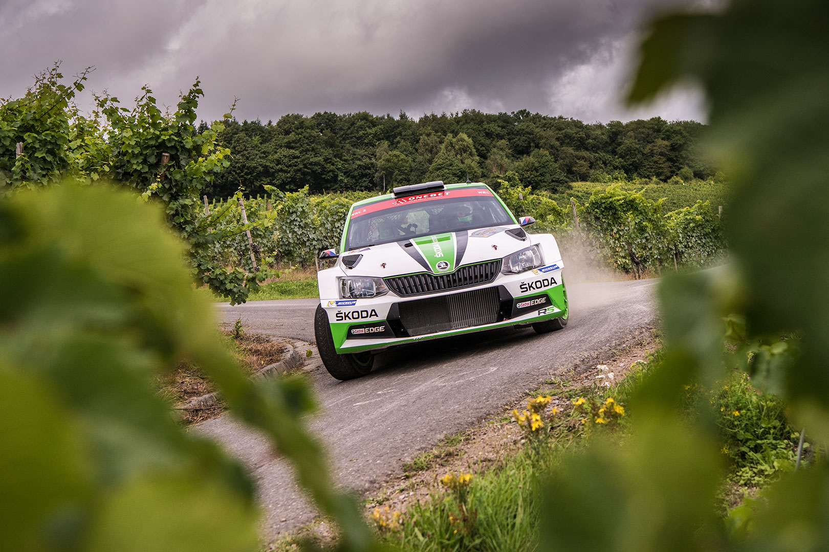 Rally Deutschland 2018: All You Need to Know Before The Rally Starts