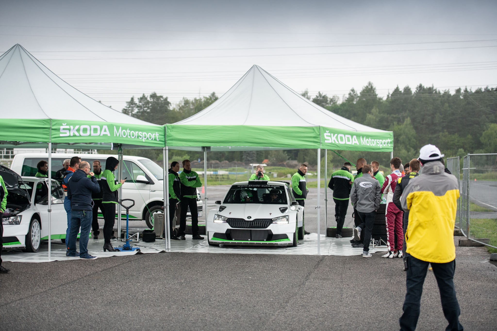 World Rally Championship: Temporada 2019 - Página 28 003